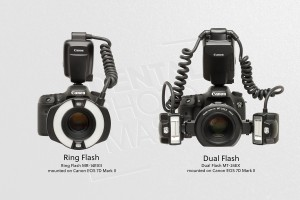 Fot.7_Ring and Dual Flash