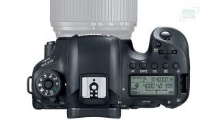 Canon 6D MarkII-3