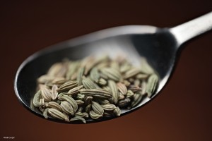 seeds-in-spoon-1
